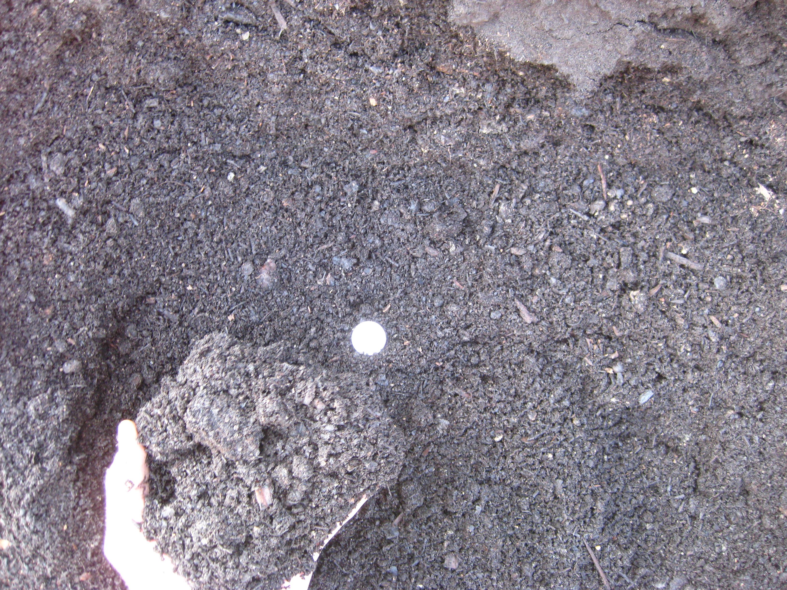 Topsoil